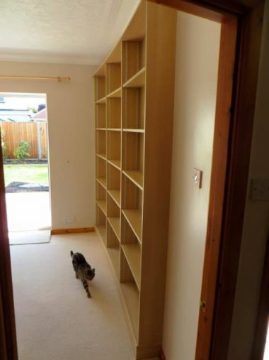 Fitted Bookcases5